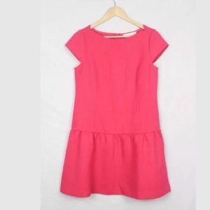 Ann Taylor Loft Live in Pink Peplum Dress Size 6